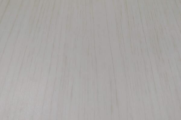 Евробрус Молочное дерево